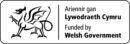 Welsh Government's Foundational Economy Challenge Fund logo