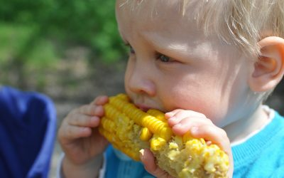 A child eating corn